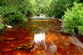 Black Water Rivers