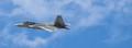 F-22 Cruise