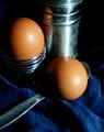2 Brown Eggs
