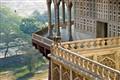 India-monkey
