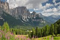 A View in the Dolomites