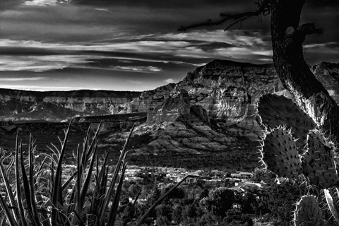 Sedona Black and White