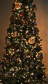 Mom's Christmas Tree 2012