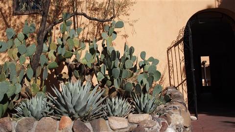 San Felipe de Neri Courtyard