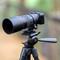 Canon 100mmL Macro