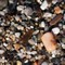 pebbles_of_almeria