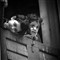 A2-Sandipan Mukherjee-The Childhood Window