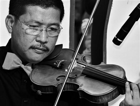 Silver Strings Violinist