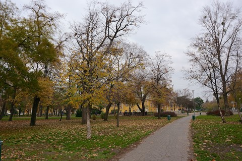 Budapest (318) - 2013-11-15 - Version 2 (13 of 18)