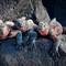 The Three Stooges: Marine iguanas enjoying the sun in the Galapagos Islands