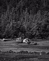 Ketchikan July B_W