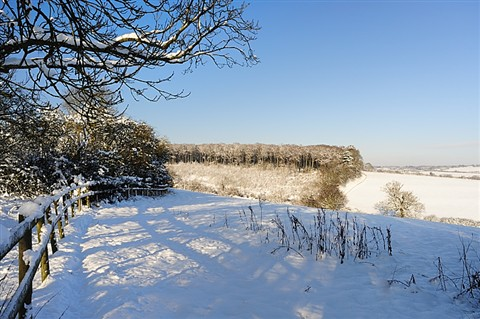 The Chilterns in the snow