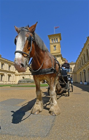 Osborne House tourist transport Horse and Cart