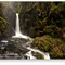 Stanley_Force_MG_2114-211190w