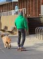 Skateboard 1dp (dog power)