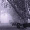Noisy Fog