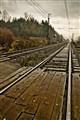 rain and rail