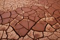 Mosaic of mud