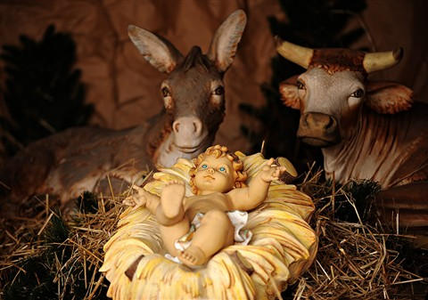 baby jesus in a manger 2 digital photography review