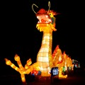 Cinese light festival - Dragon