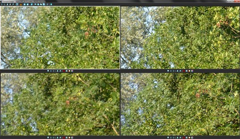 fort_028mm5_18-300_24-70_topright_F4.2-F8