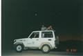 Midnight stroll in the Desert