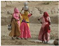 Three Rajasthani women fetching water from pond