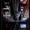 Mill-wheel - Petr Nikl fotograf Praha