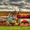Autumn Ford Truck