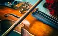 Maestro's Violin