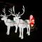 Santa n Reindeer Pulling Sleigh-1040045