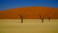 Kalahari desert in Nabibia