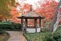 Japan Garden Fall
