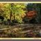 Dandenong Gardens (1800x1163) (2)