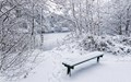 The Snow Bench