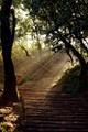 Stairway of hope...