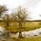 February flooding