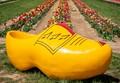 Yellow-Shoe