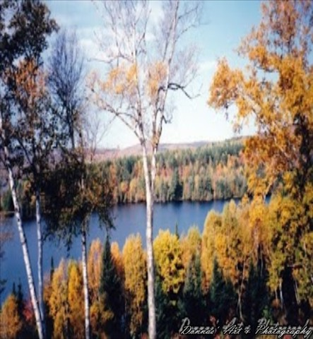 fall5 (2)