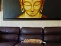 Buddhist nap