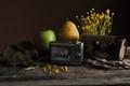 Fruit, rusty junk, and my old Kodak