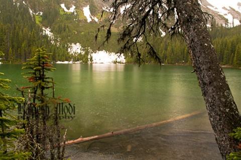 Lilian Lake Hike (761 of 800)