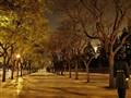 nightguard_Tiananmen (1024x768)