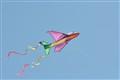 Air-Plane Kite