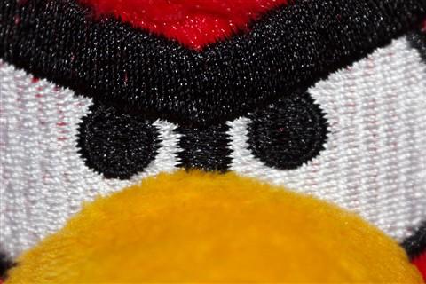 Angry Bird close up