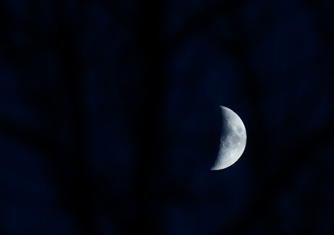 Moon121119_001