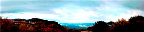narrow neck panorama2