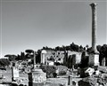 Roman Forum single column sm