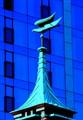 Bird architecture