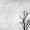 Monochrome-064
